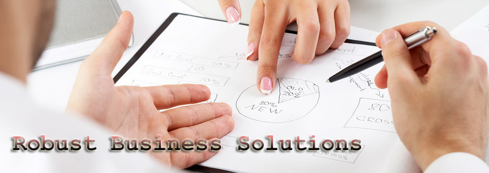 Robust Business Solutions